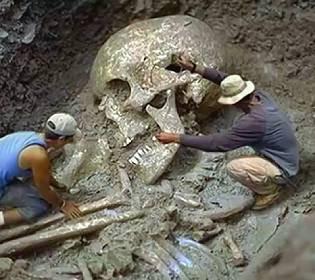 На Землі жили велетні: в Австралії знайшли гігантський людський зуб