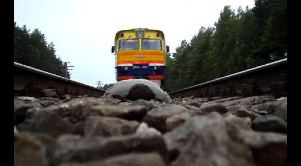 Суддя Святошинського районного суду кинувся під поїзд