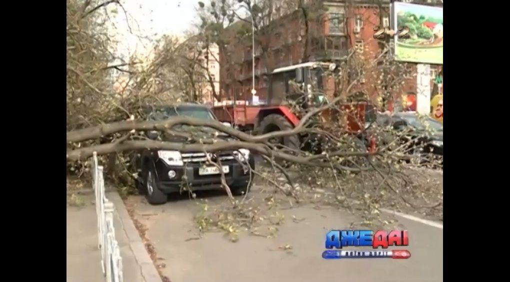 Через негоду в Києві потрощено десятки авто