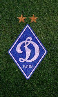 Золотой год Динамо